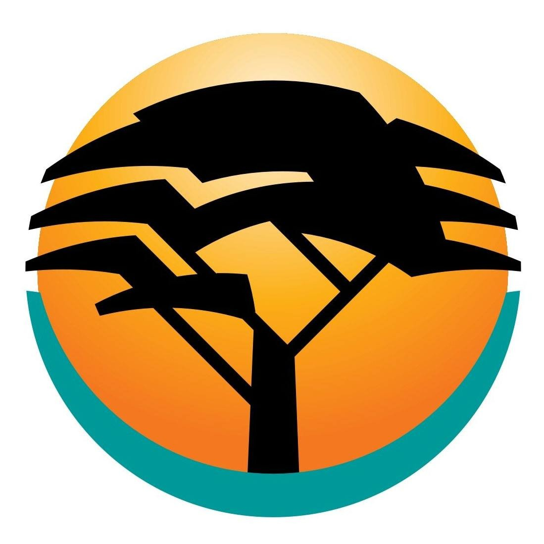 Fnb forex application form